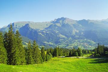 Alpine peaks of Grindelwald and Jungfrau. Landskape background of Bernese highland. Alps, tourism, journey, hiking concept. Fototapete