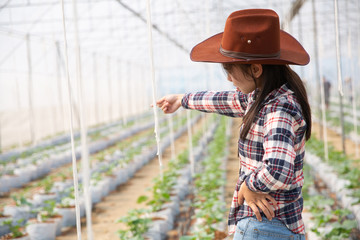 Scientist woman and farmer check melon fruit quality in greenhouse Wall mural