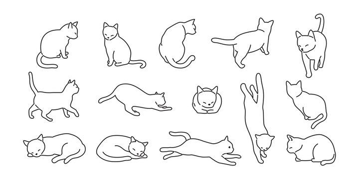 cat vector kitten icon logo cartoon character illustration doodle white