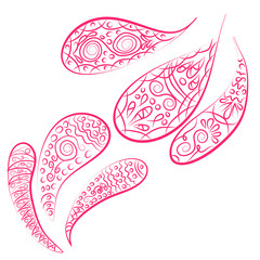 paisley ornament. Print turkish cucumber. Hand-drawn pattern for textiles.