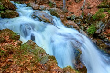 waterfalls and trees in the bavarian forest