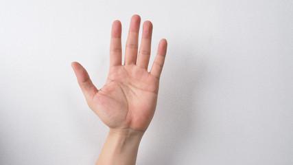 empty hand on white background.
