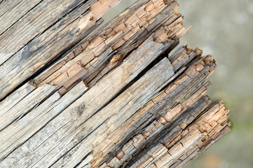 Textured rotten wood board background