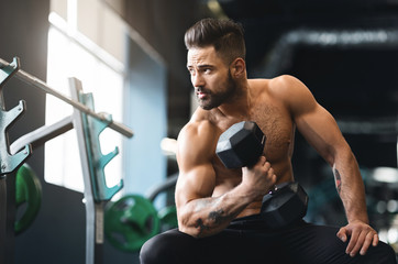 Wall Mural - Strong muscular man doing exercises with dumbbells