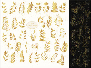 Vector set of gold plants and contours on a light and black background