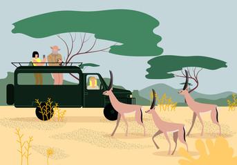 Tourists Driving Jeep on Safari in Africa. Savanna