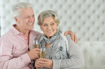 Portrait of mature couple drinking champagne at home