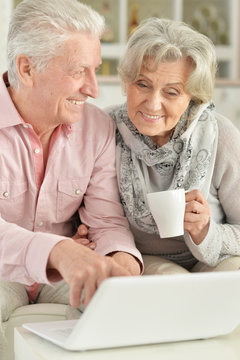 Portrait of senior couple using laptop at home