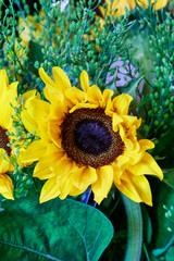 Fototapete - Bouquet with sunflowers.