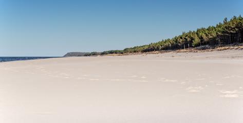Wald Natur Karwia Strand