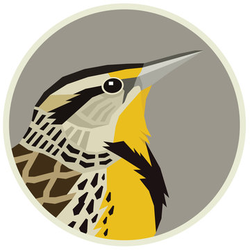 Western meadowlark Vector illustration of a bird in a round frame