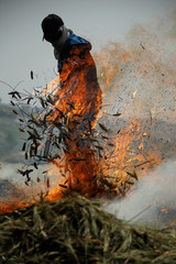 Palestinian worker rakes burning wheat spikes in the process of making freekeh, a Middle Eastern cereal dish, in Jenin in the Israeli-occupied West Bank