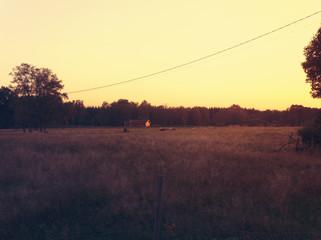 Landschaft am Abend in Småland , Schweden.