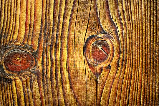 beautiful spruce wood plank texture