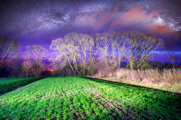 Wall Mural - Milky Way over the field.