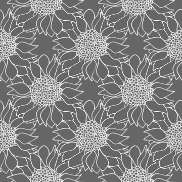 Sunflowers flowers seamless pattern in black and white colors.