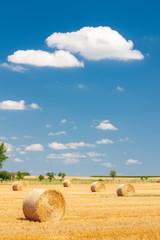 field with straw
