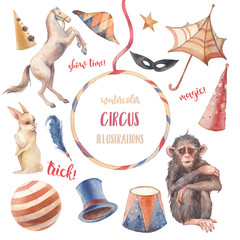 Watercolor circus set. Hand drawn illustrations: trained horse and monkey, white rabbit, cylinder hat and other trick accesorises. Isolated retro objects