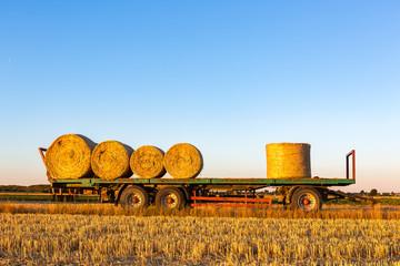 Ein Landwirtschaftstransportwagen, befüllt mit Heuballen, die in der Sonne goldgelb glänzen