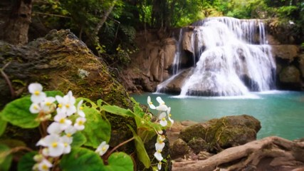Wall Mural - RF Waterfall flow standing with forest enviroment and Angel Wing Begonia flower in thailand, called Huay or Huai mae khamin in Kanchanaburi Provience, Panning Right, Panning.