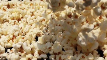 Fototapete - Fresh popcorn fall down on the ground in Slow Motion
