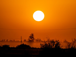 Golden sunset in countryside on a foggy day