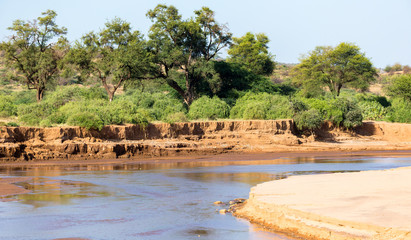 A river in the countryside of Kenya Wall mural