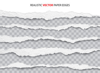 realistic torn paper edges vector