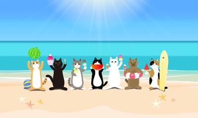 真夏のビーチリゾートを楽しむ 並ぶ猫たち