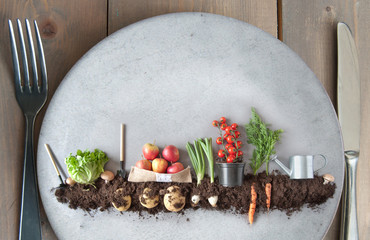 Obraz Organic plant based concept - fototapety do salonu