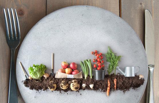 Organic plant based concept