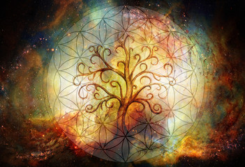 tree of life symbol and flower of life and space background, yggdrasil. Wall mural