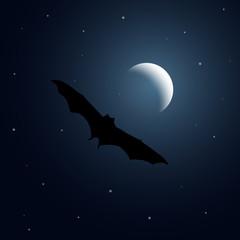 Bat flying at night landscape moon vector illustration
