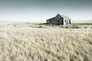 Abandoned Wooden Barn In A Field