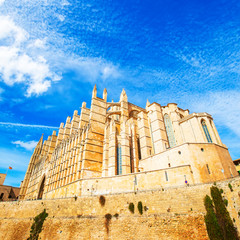 Wall Mural - Palma de Mallorca Cathedral, Spain