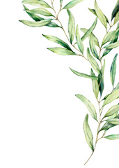 Watercolor olive branch card with leaves. Hand painted floral illustration isolated on white background for design, print, fabric or background.