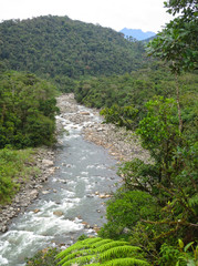 Photo sur Aluminium Rivière de la forêt Fast flowing river with rocks in the lower part of the Manu road on east side slope of the Andes in Peru. Forested slopes on both sides.