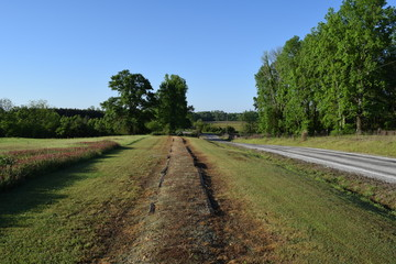 Walking path at the Ingomar Mounds in Mississippi