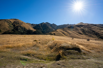 The rolling hills of Arrowtown in New Zealand at the start of Autumn