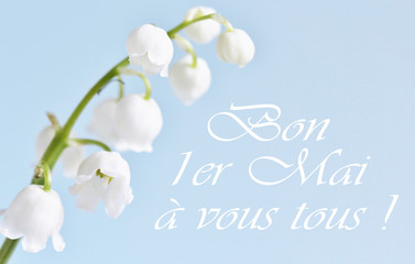 postcard on May 1 in France. Lily of the valley on a blue background. holiday lily of the valley - the French tradition. the inscription in French