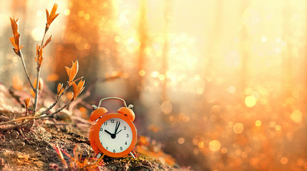 clock alarm in autumn nature forest. concept make time for nature, environment. Daylight savings time. Symbolic still life representing autumn season. beautiful fall season scene. soft focus Wall mural