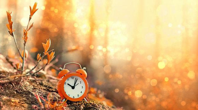 clock alarm in autumn nature forest. concept make time for nature, environment. Daylight savings time. Symbolic still life representing autumn season. beautiful fall season scene. soft focus