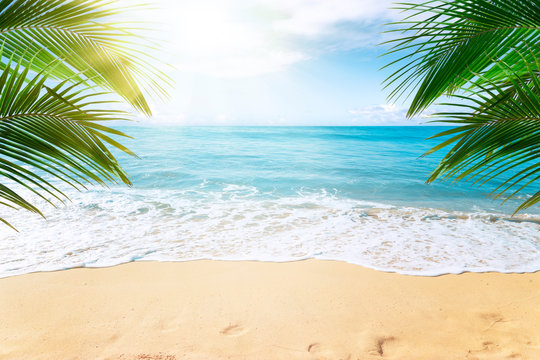 Sunny tropical Caribbean beach with palm trees and turquoise water, island vacation, hot summer day