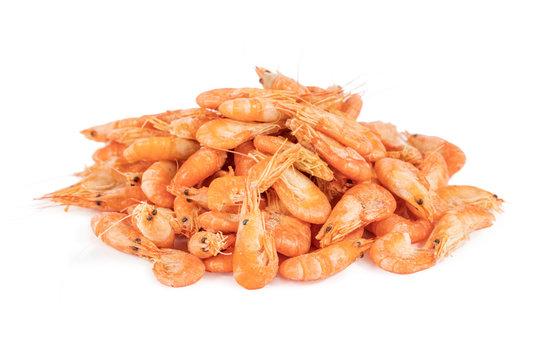 bunch of little shrimp on white