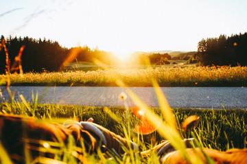 Foto op Canvas Meloen Gelber Sonnenuntergang