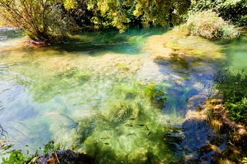 Krka, Sibenik, Croatia - Flowing with the calm stream course of the Krka ríver
