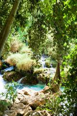 Krka, Sibenik, Croatia - Resting at a small glade by the river of Krka National Park