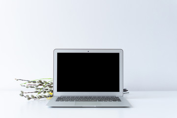 Open laptop and easter catkin on the desk with white background