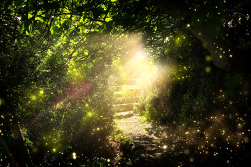 Road and stone stairs in magical and mysterious dark forest with mystical sun light and firefly. Fairy tale concept