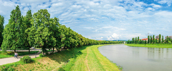 longest linden alley in europe. wonderful urban scenery near the river. pupular travel destination in uzhgorod, ukraine. panorama of trees in blossom on the grassy embankment
